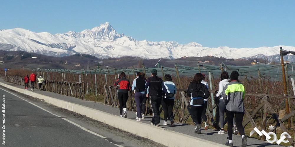Panorama Monviso