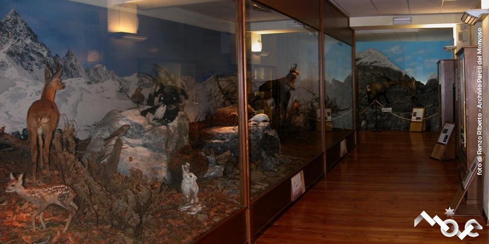 Museo del Po di Revello
