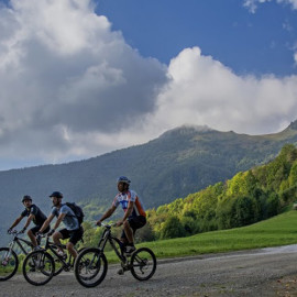 bike provence