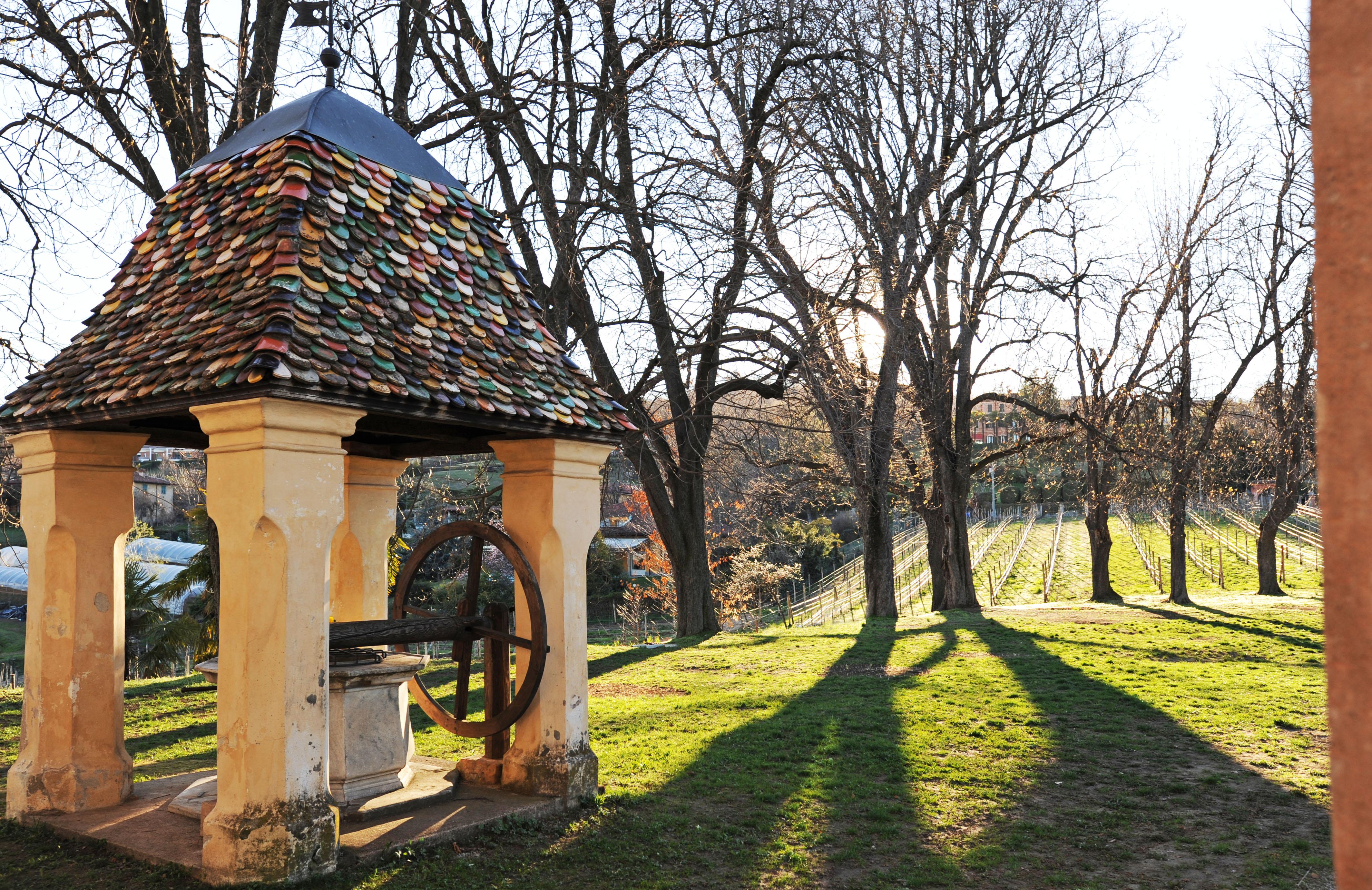 villa Belvedere_vigna